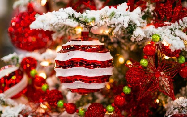 Фото обои зима, шарики, снег, украшения, ветки, игрушки, бусы