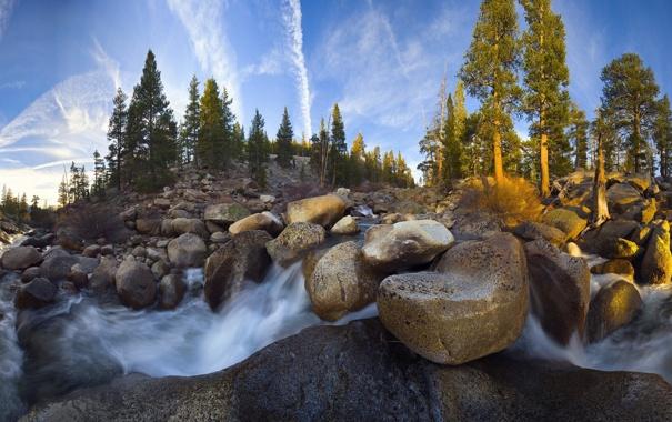 Фото обои лес, река, камни, Природа