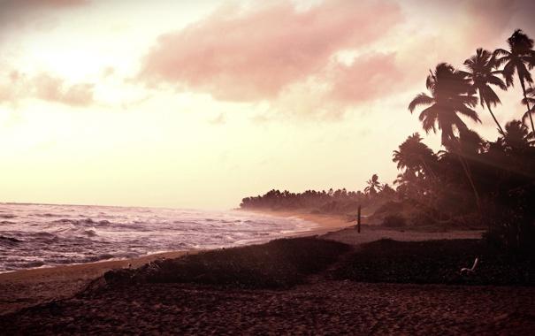 Фото обои песок, море, вода, деревья, фото, океан, обои