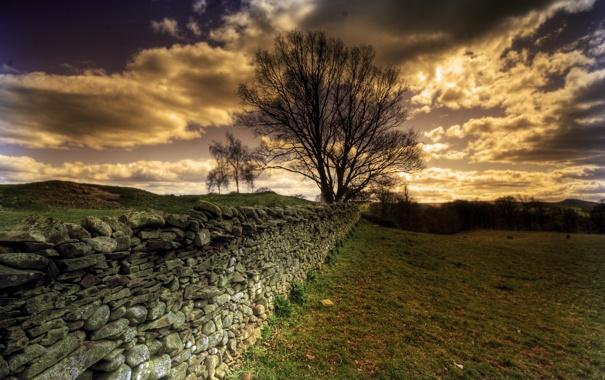 Фото обои небо, пейзаж, природа, забор