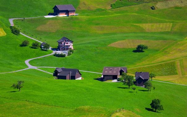 Фото обои дорога, трава, холмы, поля, дома