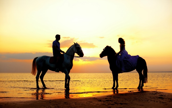 Фото обои море, девушка, закат, побережье, лошади, парень