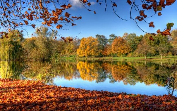 Фото обои осень, небо, листья, деревья, природа, отражение, река