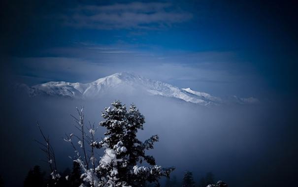 Фото обои зима, снег, деревья, горы, природа, мороз