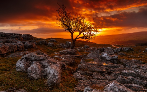 Фото обои дорога, небо, деревья, закат, горы, тучи, камни