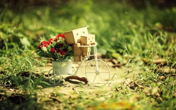 Фото обои трава, цветы, велосипед, Danbo