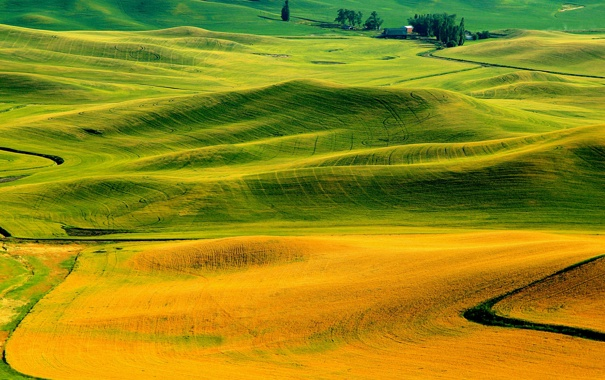 Фото обои осень, трава, холмы, поля, Италия