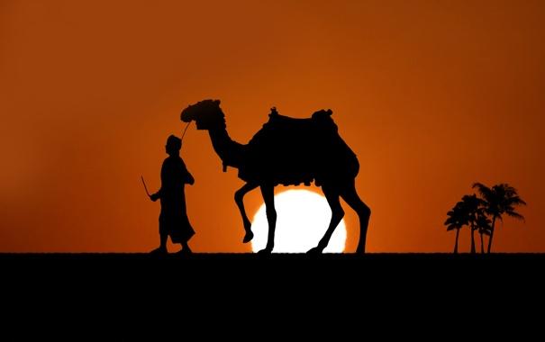 Фото обои люди, настроение, обои, пустыня, человек, минимализм, арт