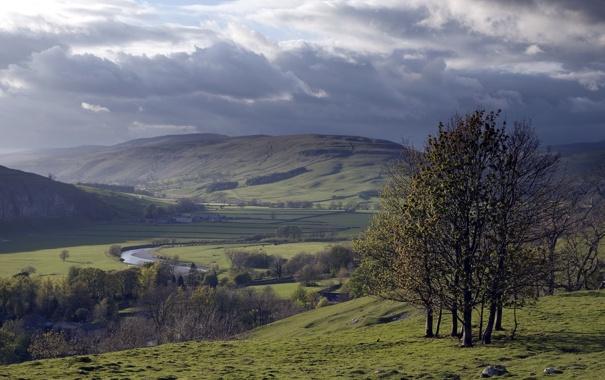 Фото обои деревья, пейзаж, природа, долина
