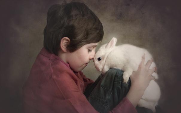 Фото обои настроение, кролик, ребёнок