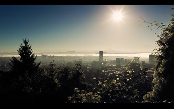 Фото обои солнце, лучи, свет, города, пейзажи, дома, утро