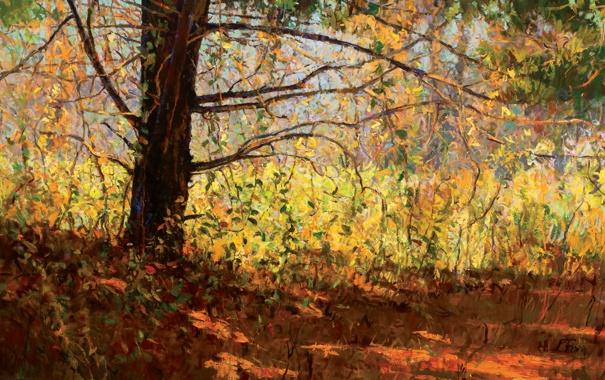 Фото обои осень, листья, свет, пейзаж, ветки, дерево, тень