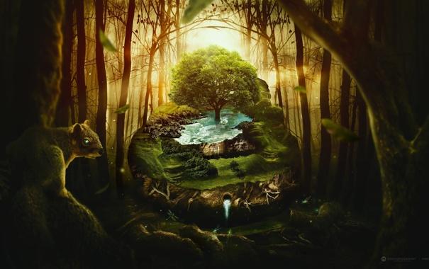 Фото обои лес, вода, креатив, дерево, белка, desktopography