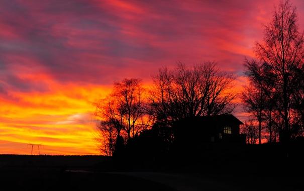 Фото обои небо, облака, деревья, дом, силуэт, зарево