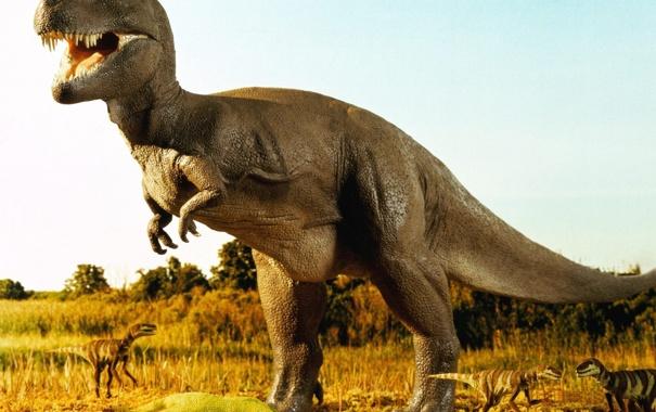 Фото обои животные, Динозавр, юрский период, ненастоящие