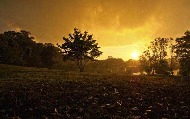 Фото обои вода, капли, природа, фото, дождь, настроение, пейзажи