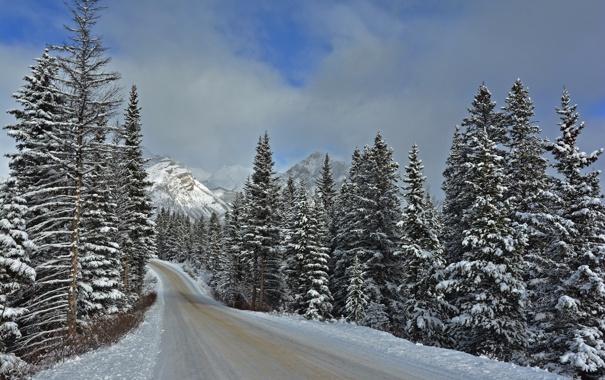 Фото обои зима, дорога, Banff National Park