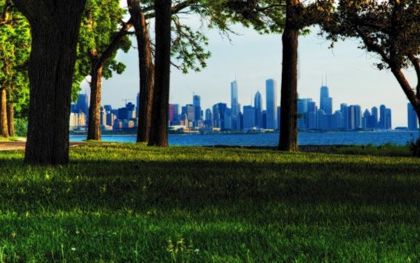 Фото обои лето, трава, деревья, парк, USA, чикаго, Chicago