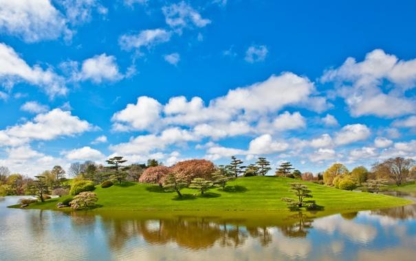 Фото обои небо, трава, облака, деревья, озеро, пруд, парк