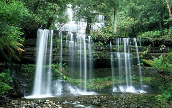 Фото обои лес, камни, водопад