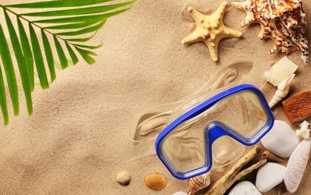 Фото обои песок, пляж, лето, ракушки, seashells