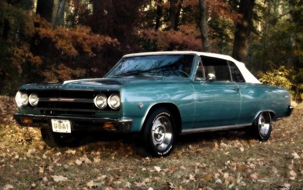 Фото обои лес, листья, Chevrolet, кабриолет, шевроле, мускул кар, 1965