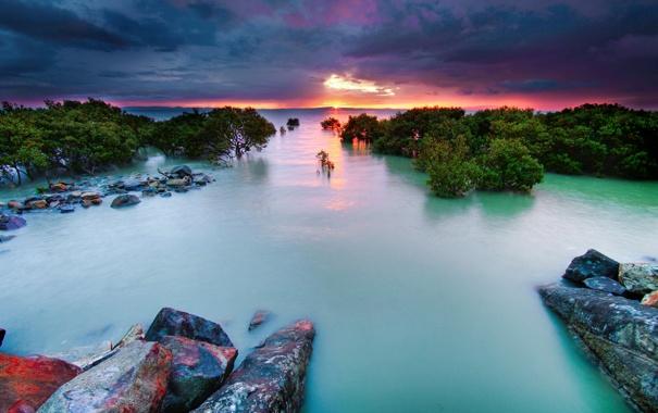 Фото обои море, небо, закат, камни, кусты