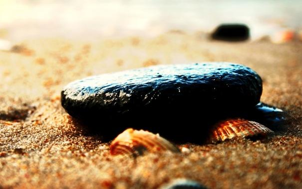 Фото обои песок, пляж, макро, галька, камни, ракушки, морская тематика