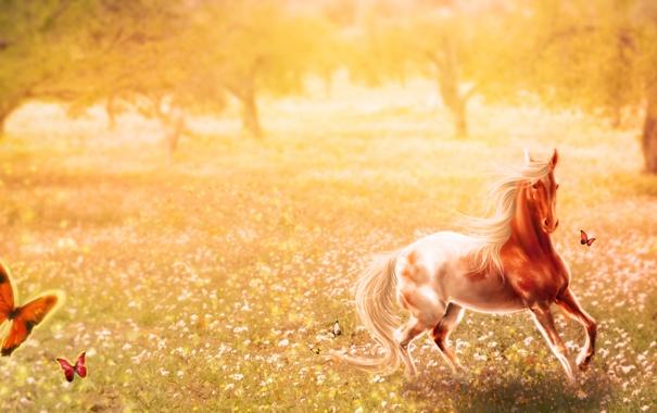 Фото обои деревья, бабочки, природа, животное, лошадь, арт, ярко