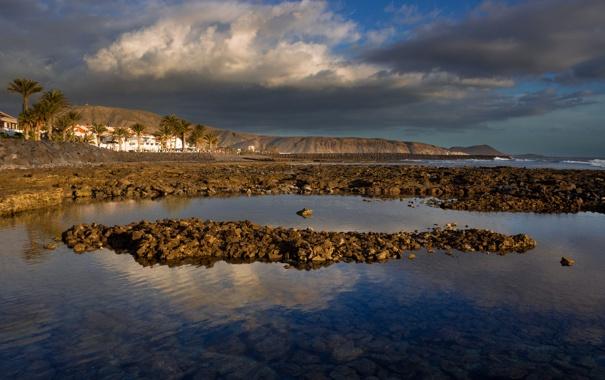 Фото обои море, горы, пальма, дома, Испания, Канарские острова, Тенерифе