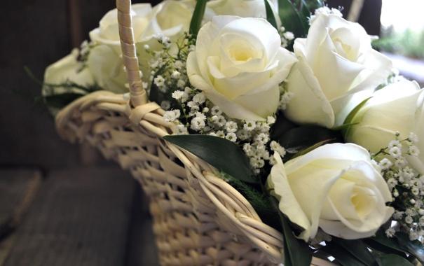 Фото обои розы, букет, белые, корзинка