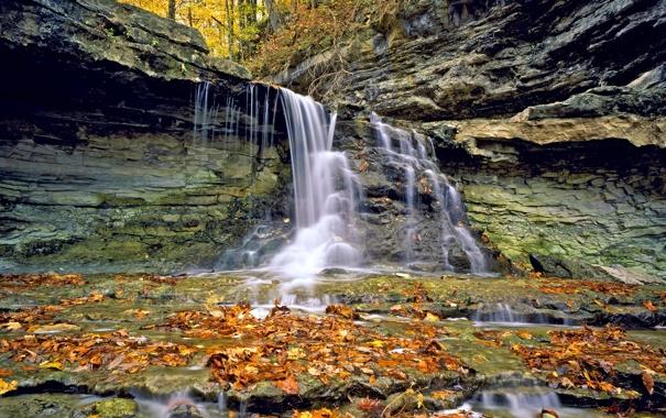 Фото обои осень, листья, водопад
