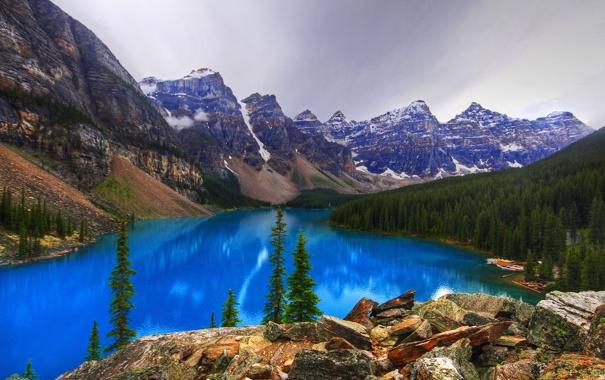 Фото обои лес, деревья, горы, камни, скалы, Banff National Park, Alberta