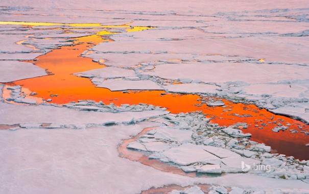 Фото обои лед, вода, закат, отражение, Антарктика, полынья