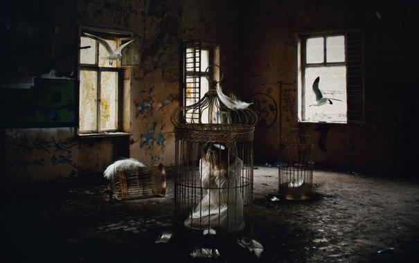 Фото обои девушка, птицы, клетка
