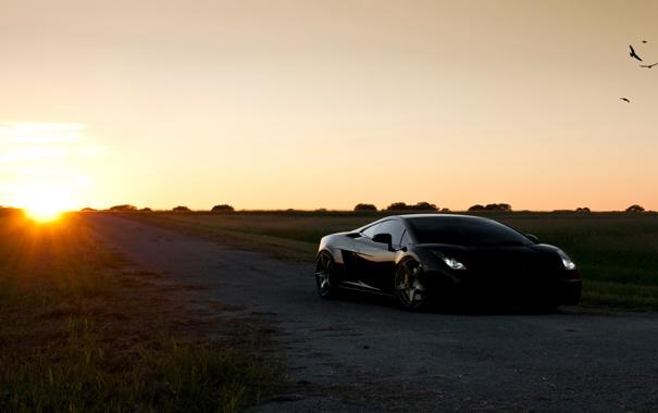 Фото обои солнце, тачки, gallardo, lamborghini, cars, auto wallpapers, авто обои