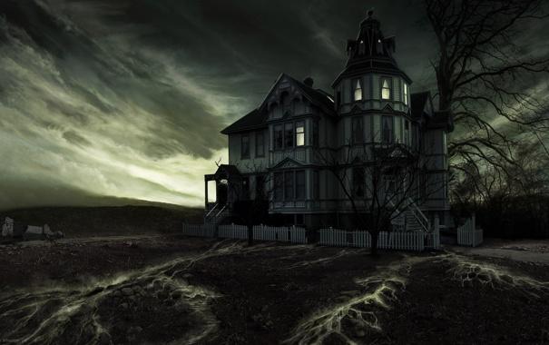 Фото обои рисунок, Dan Wheaton, Leaky House Matte