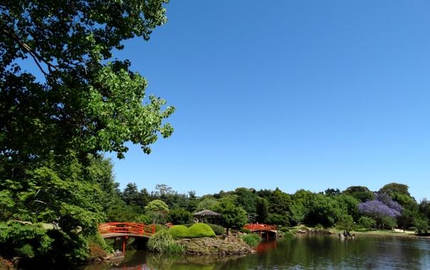 Фото обои небо, деревья, пруд, парк, камни, голубое, Австралия