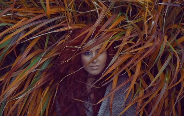 Фото обои взгляд, девушка, природа, лицо, волосы