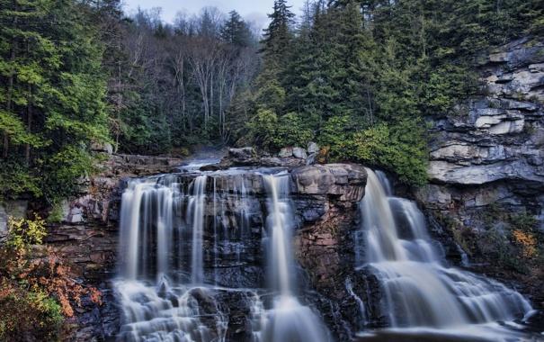 Фото обои лес, скалы, водопад, Западная Вирджиния, West Virginia, каскад Блэкуотер, Blackwater Falls