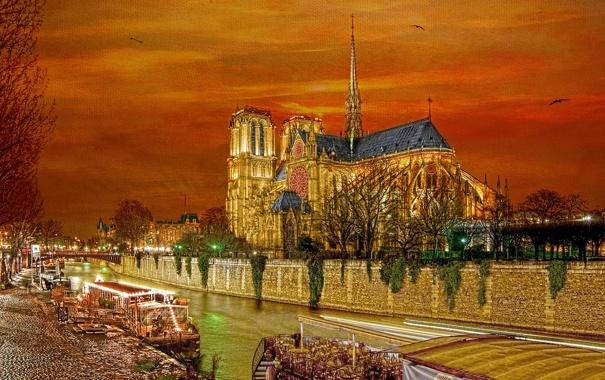 Фото обои небо, птицы, огни, река, Франция, Париж, вечер
