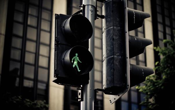 Фото обои деревья, зеленый, green, цвет, здания, дома, светофор