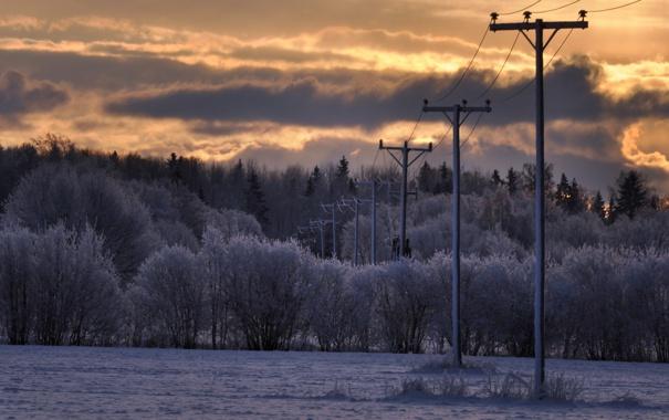 Фото обои зима, поле, природа, утро, лэп