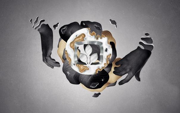 Фото обои пауки, жук, руки, эмблема, мягкость, складки, desktopography