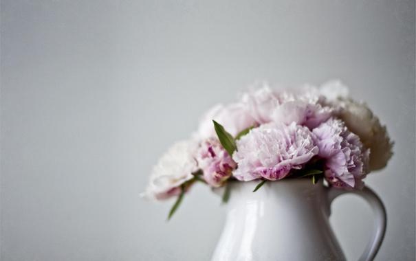 Фото обои цветы, ваза, розовые, кувшин, пионы