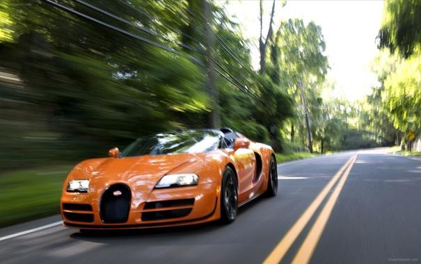 Фото обои Roadster, Bugatti, Veyron, supercar, road, speed, orange