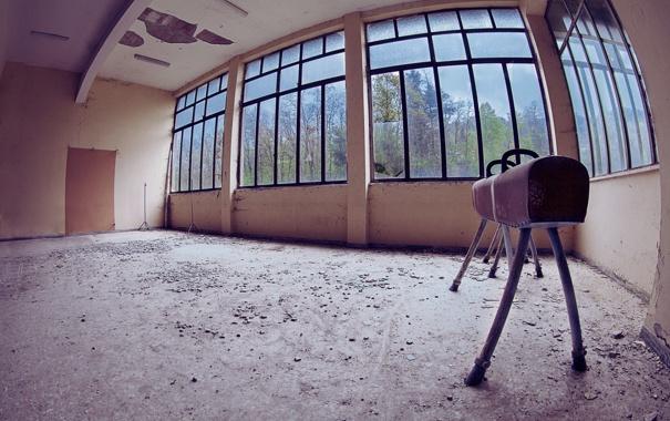 Фото обои конь, спорт, гимнастика, зал
