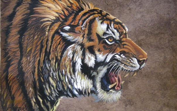 Фото обои тигр, работа, рисунок, зубы, арт, пасть, клыки