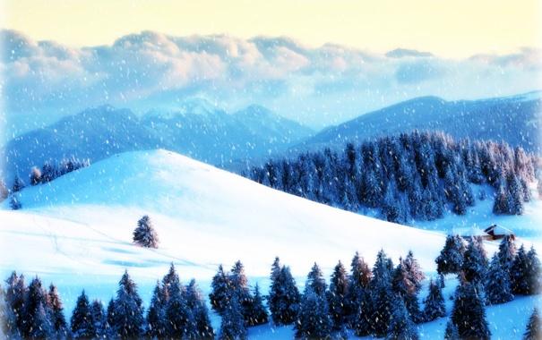 Фото обои зима, лес, снег, горы