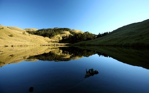 Фото обои трава, деревья, холм, зеркальная гладь, небо, озеро